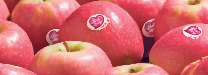 Insight | Pink Lady® Apples