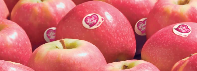 Insight-Pink-Lady-Apples.jpeg