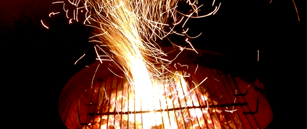 THE-WORLDS-FIRST-TWEETING-BRAAI.png