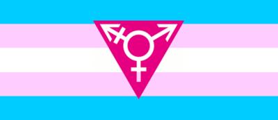 Transgender%20flag-triangle